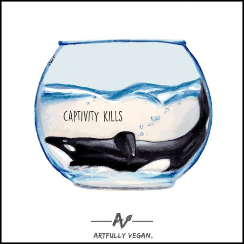 Captivity Kills - Bri VT