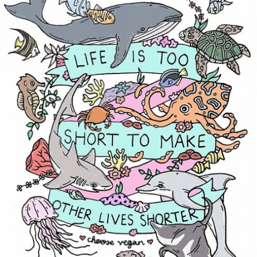 Life Is Too Short To Make Other Lives Shorter - Jessica Henderson
