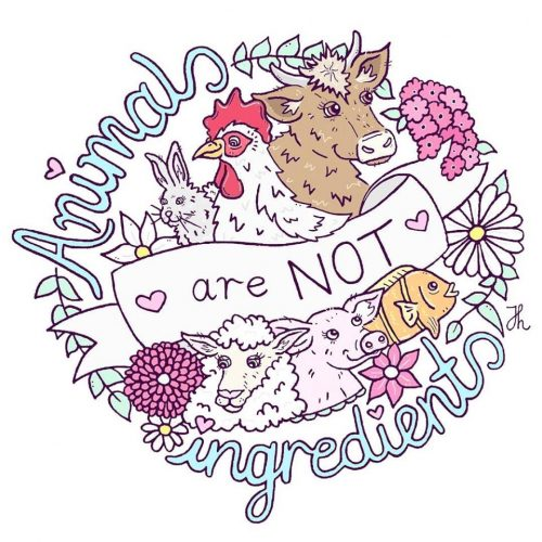 Animals are not Ingredients - Jessica Henderson
