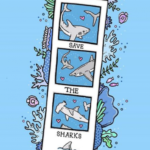 Save the Sharks - Jessica Henderson