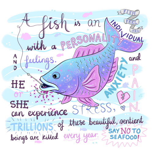 A Fish is an Individual with a Personality and Feelings - Jessica Henderson