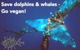 savedolphinsandwhales