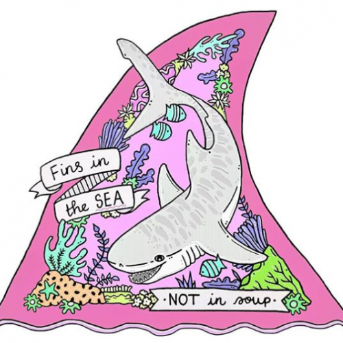 Fins in the Sea, Not in Soup - Jessica Henderson