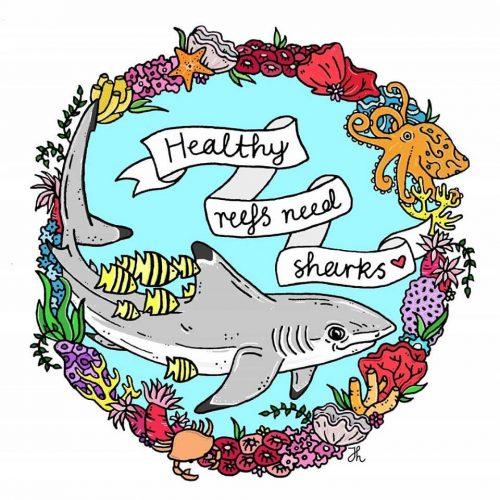 Healthy Reefs Need Sharks - Jessica Henderson