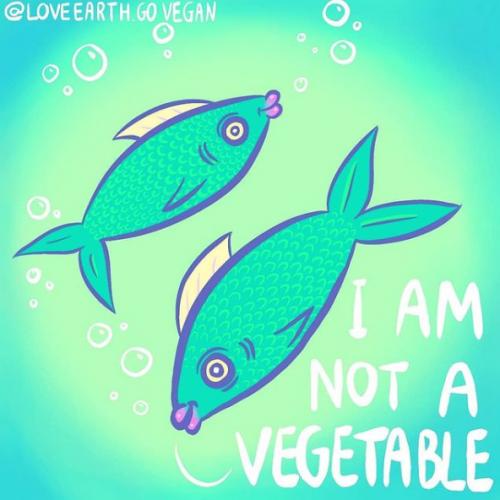 I am Not a Vegetable - Marte Luna